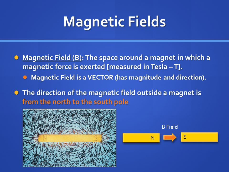 Magnetic Fields Magnetic Field (B): The space around a magnet in which a magnetic force is exerted [measured in Tesla – T].